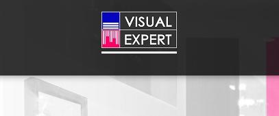 Visual Expert